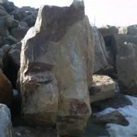 Камень пластушка Дракон для дизайнерской отделки
