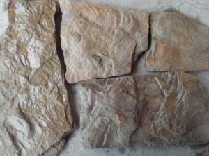 Купить Песчаник природный камень Дракон натуральный