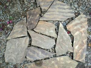 Охота на камни